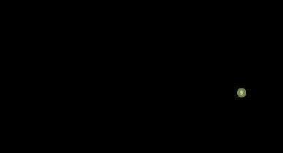 Ossi buchi